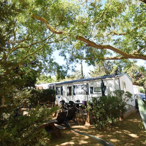 Camping Le Mas Des Lavandes: Mh Classic Principal