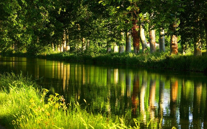 Camping Le Mas Des Lavandes : Canal Du Midi