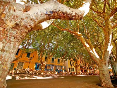 Camping Le Mas Des Lavandes: Sérignan